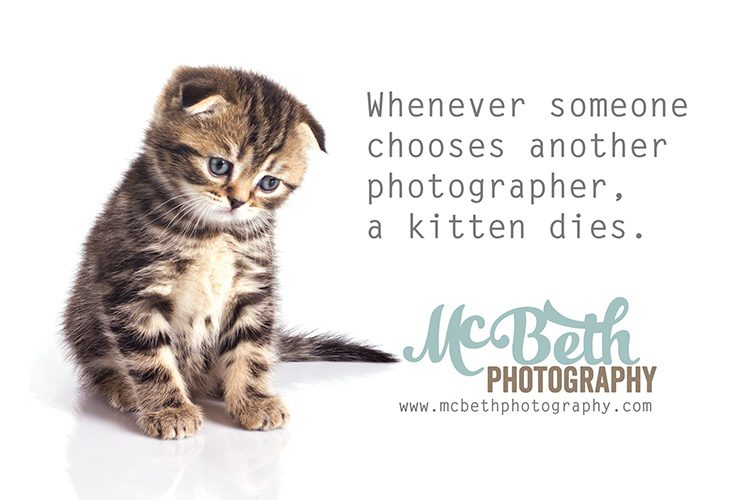 Book me or the kitten gets it!!